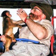Welsh Zootographer