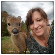 River Rock Wildlife