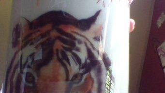 Pantheraman