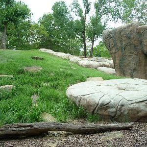 Oklahoma city zoo zoochat Oklahoma city zoo and botanical garden
