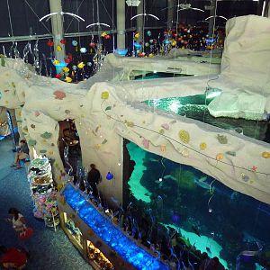 Downtown Aquarium Denver Photo Galleries Zoochat