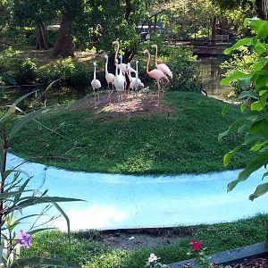 Louisiana Purchase Gardens Zoo Page 2 Zoochat