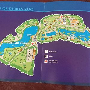 Dublin Zoo Page 8 ZooChat