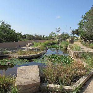 Living Desert Zoo And Gardens State Park Zoochat
