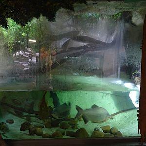 Zoologická Zahrada Jihlava - Photo Galleries | ZooChat