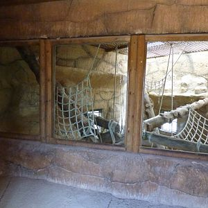 Indoor Chimpanzee Enclosure