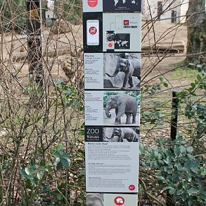 Elephant-signs