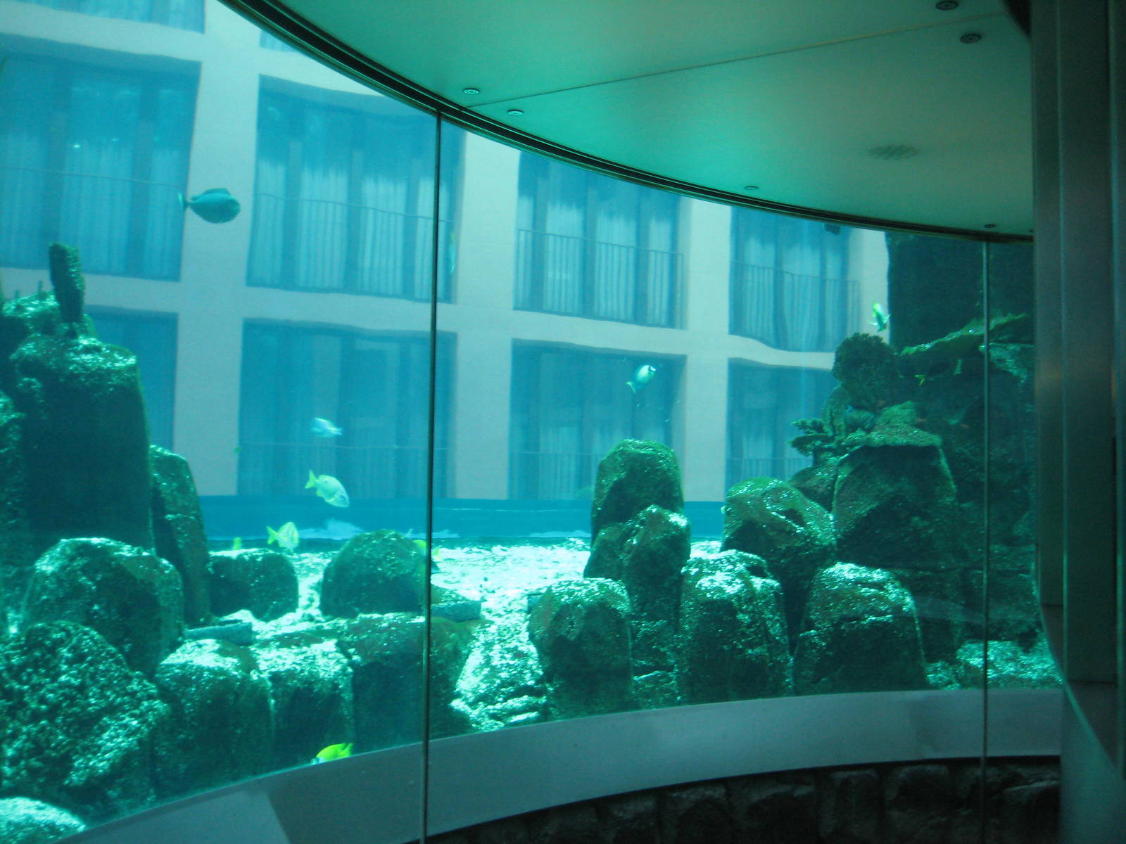 how to visit fish tank elevator berlin
