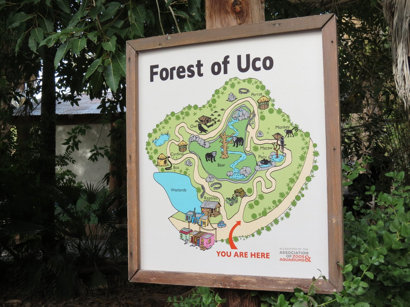 Forest Of Uco Complex Map Zoochat