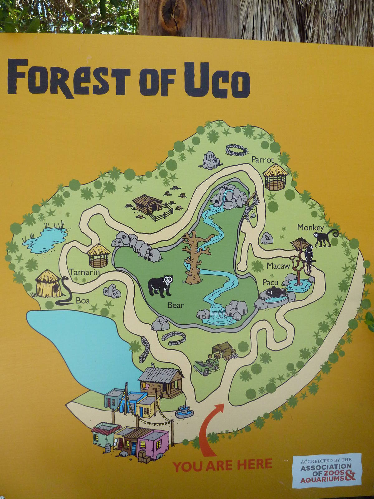 Forest Of Uco Map Zoochat
