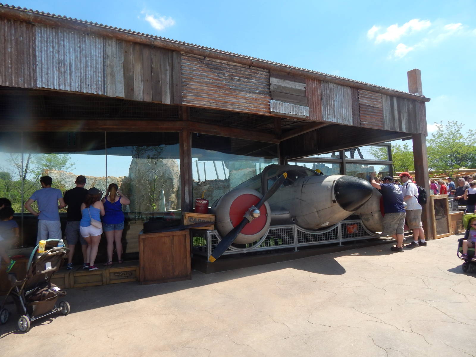 Heart Of Africa African Lion Exhibit Plane Viewing