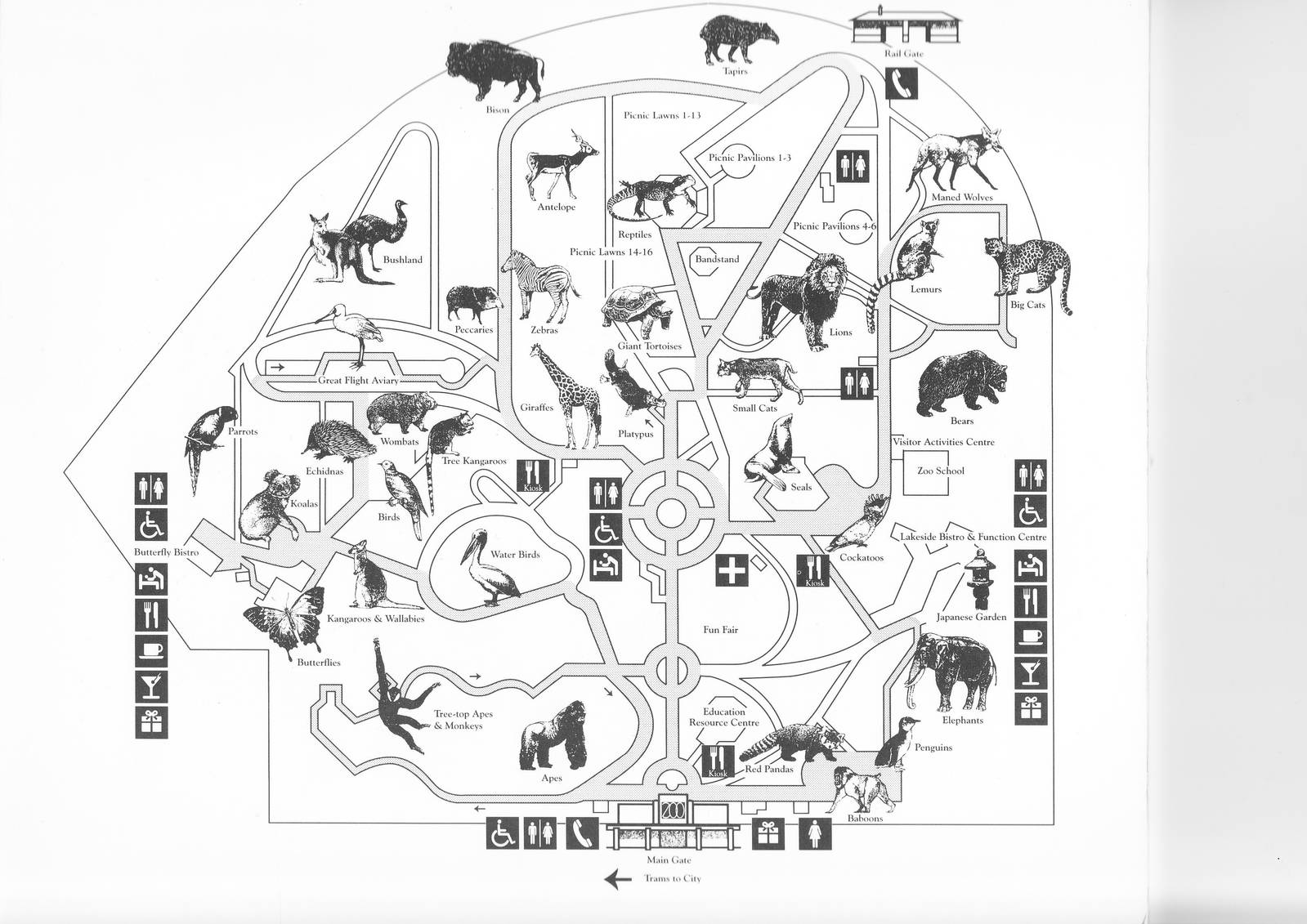 Melbourne Zoo Map Melbourne Zoo map 1992   ZooChat Melbourne Zoo Map