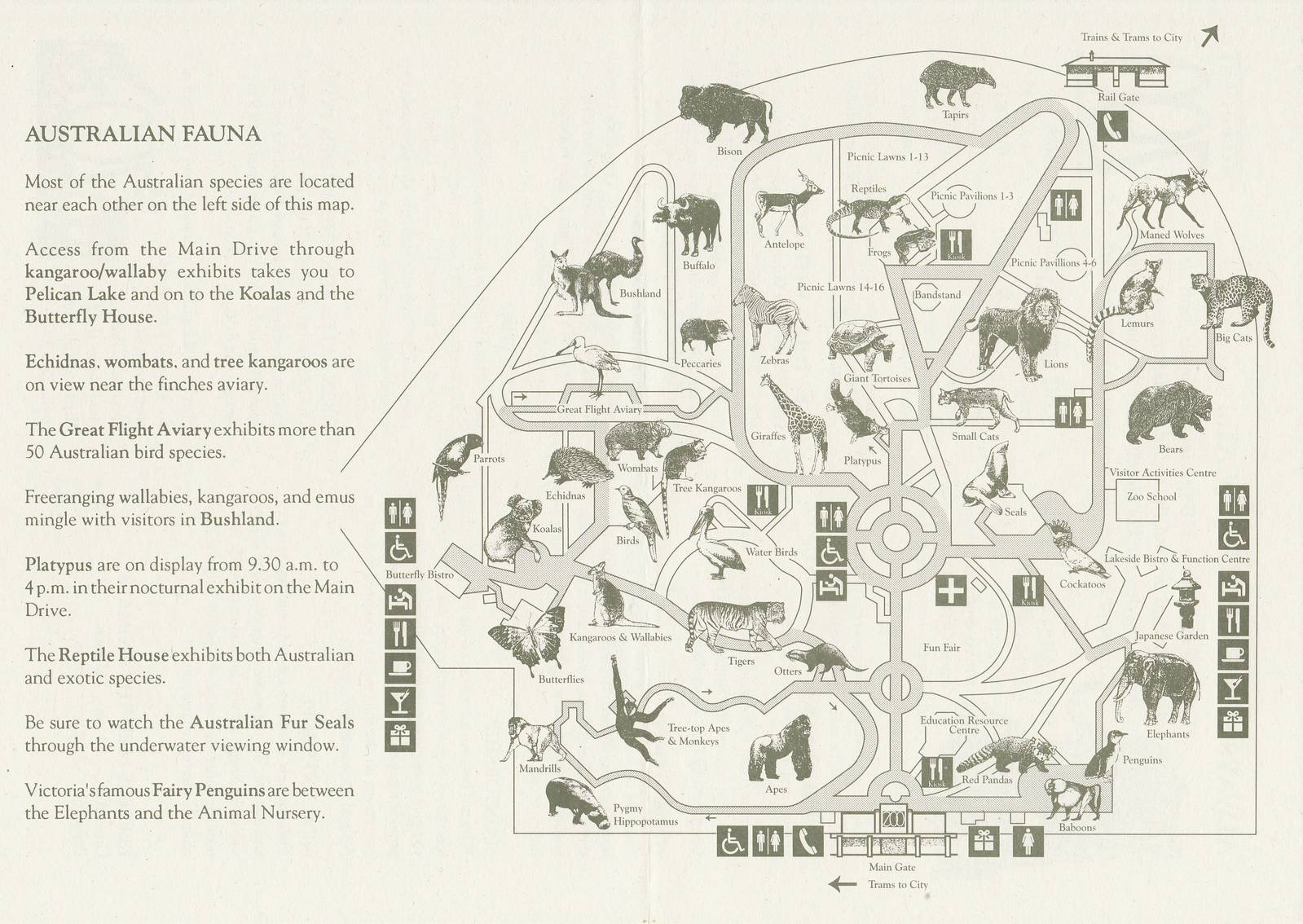 Old Australia Zoo Map.Melbourne Zoo Map 1993 Zoochat