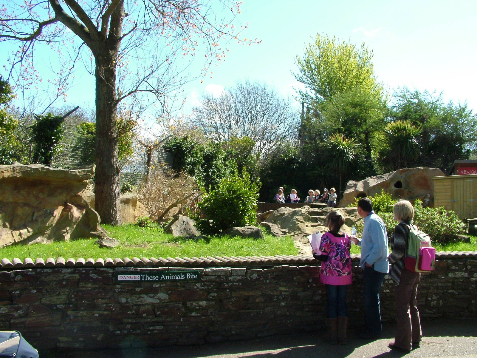 newquay chat Go wild at newquay zoo: get closer to hundreds of species at the zoo children's play area, events, good food & easy access a perfect day out for the family.