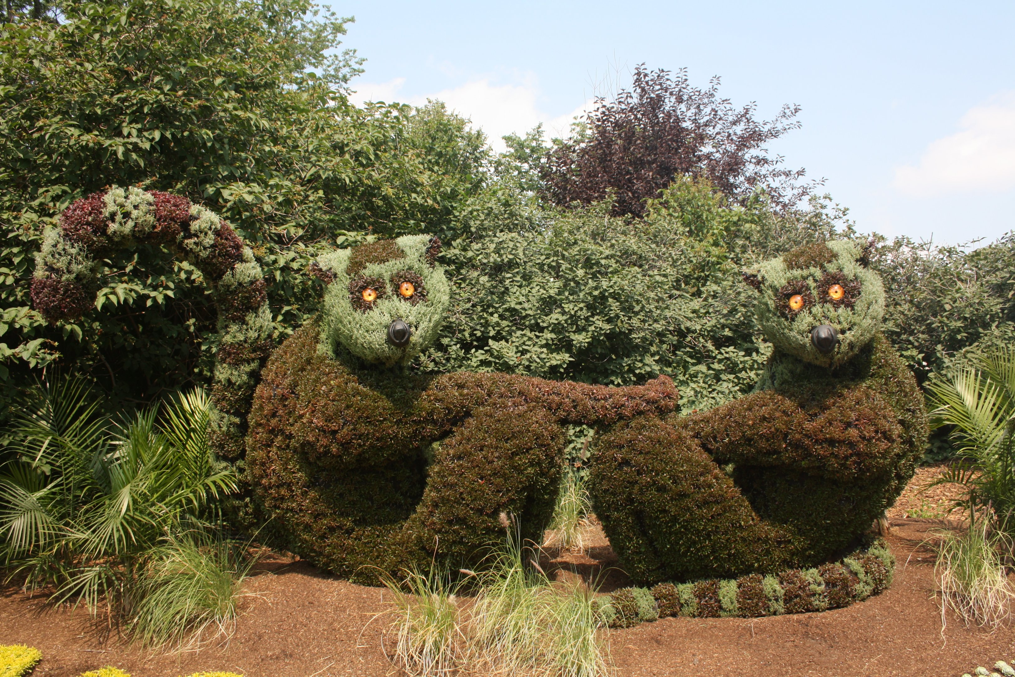 Ring-Tailed Lemur Topiary - Awesome! | ZooChat