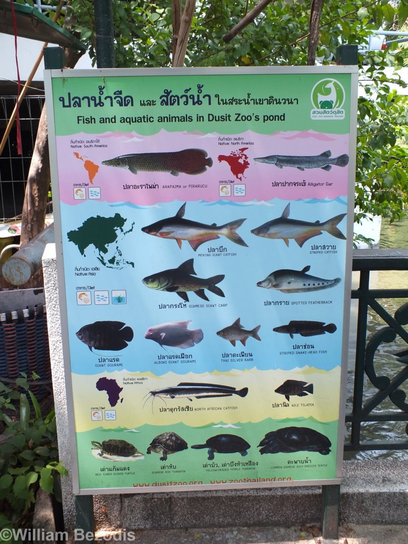 Sign About Fish in the Lake/Pond - ZooChat